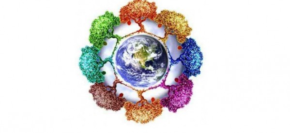 8 ecologia-599x275
